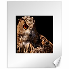 Owl Canvas 16  x 20  (Unframed)