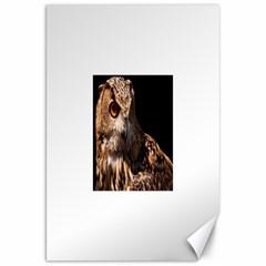 Owl Canvas 20  x 30  (Unframed)