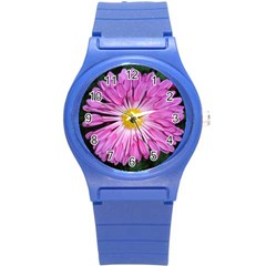 Pink Aster Plastic Sport Watch (small)
