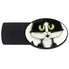 Curiouskitties414 1GB USB Flash Drive (Oval)