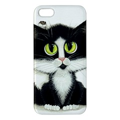 Curiouskitties414 Iphone 5 Premium Hardshell Case