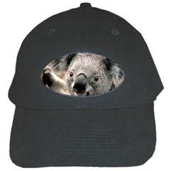 Koala Black Baseball Cap