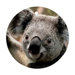 Koala Round Ornament