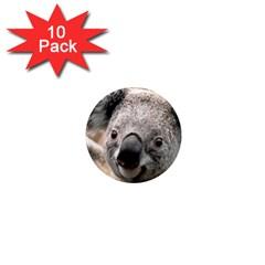 Koala 1  Mini Button Magnet (10 Pack)