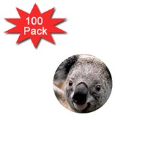 Koala 1  Mini Button Magnet (100 Pack)
