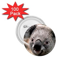 Koala 1.75  Button (100 pack)