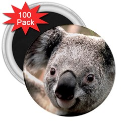 Koala 3  Button Magnet (100 pack)