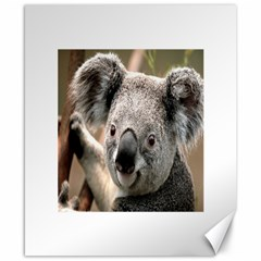 Koala Canvas 8  x 10  (Unframed)