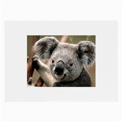 Koala Glasses Cloth (large)