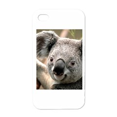 Koala Apple iPhone 4 Case (White)