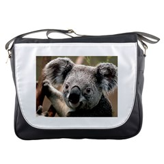 Koala Messenger Bag