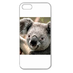 Koala Apple Seamless iPhone 5 Case (Clear)