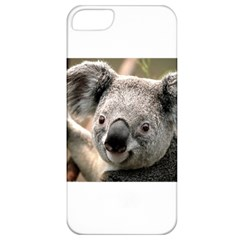 Koala Apple Iphone 5 Classic Hardshell Case