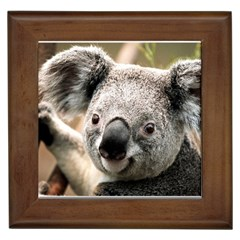 Koala Framed Ceramic Tile