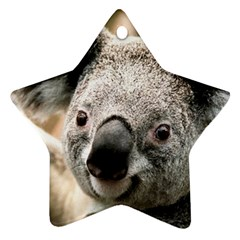 Koala Star Ornament