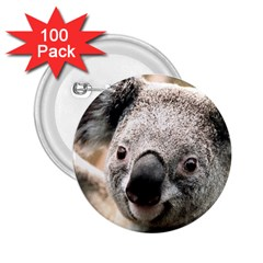 Koala 2 25  Button (100 Pack)