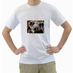 Koala Mens  T Shirt (white)