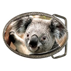 Koala Belt Buckle (Oval)