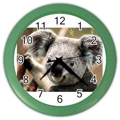 Koala Wall Clock (Color)