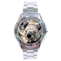 Koala Stainless Steel Watch (men s)