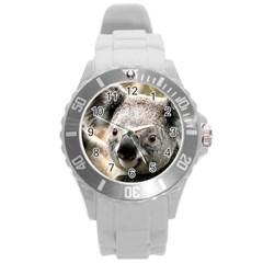 Koala Plastic Sport Watch (Large)