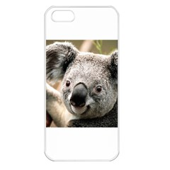 Koala Apple iPhone 5 Seamless Case (White)