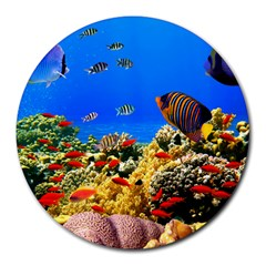 Fish 8  Mouse Pad (round)