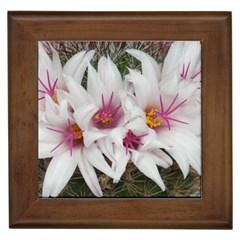 Bloom Cactus  Framed Ceramic Tile