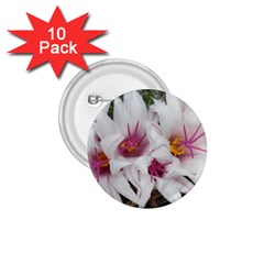 Bloom Cactus  1.75  Button (10 pack)