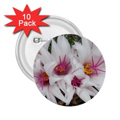 Bloom Cactus  2.25  Button (10 pack)
