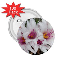Bloom Cactus  2 25  Button (100 Pack)