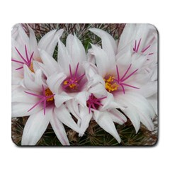 Bloom Cactus  Large Mouse Pad (Rectangle)