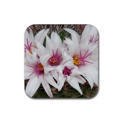 Bloom Cactus  Drink Coasters 4 Pack (Square)