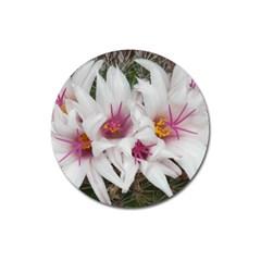 Bloom Cactus  Magnet 3  (Round)