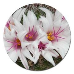 Bloom Cactus  Magnet 5  (Round)
