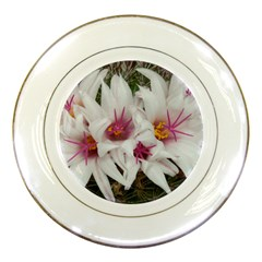Bloom Cactus  Porcelain Display Plate