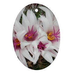 Bloom Cactus  Oval Ornament (two Sides)