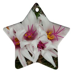 Bloom Cactus  Star Ornament (Two Sides)