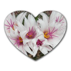 Bloom Cactus  Mouse Pad (Heart)