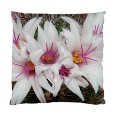 Bloom Cactus  Cushion Case (Two Sides)