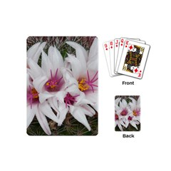 Bloom Cactus  Playing Cards (Mini)