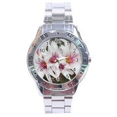 Bloom Cactus  Stainless Steel Watch (men s)