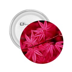 Red Autumn 2 25  Button