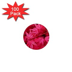 Red Autumn 1  Mini Button Magnet (100 Pack)