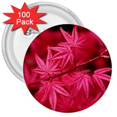 Red Autumn 3  Button (100 Pack)