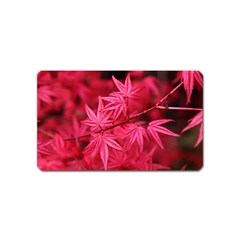 Red Autumn Magnet (name Card)