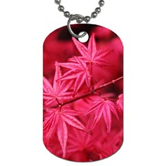 Red Autumn Dog Tag (One Sided)