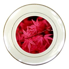 Red Autumn Porcelain Display Plate
