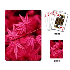 Red Autumn Playing Cards Single Design