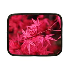 Red Autumn Netbook Case (Small)